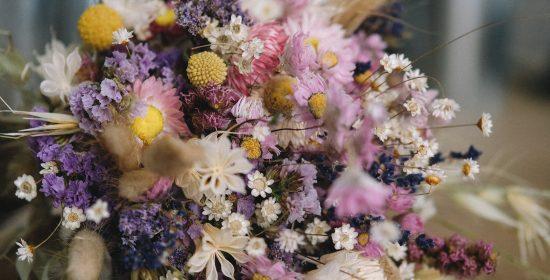 fiori-secchi-1